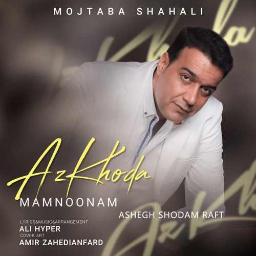 دانلود آهنگ جدید مجتبی شاه علی به نام عاشق شدم رفت