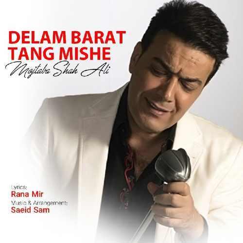دانلود آهنگ جدید مجتبی شاه علی به نام دلم برات تنگ شده