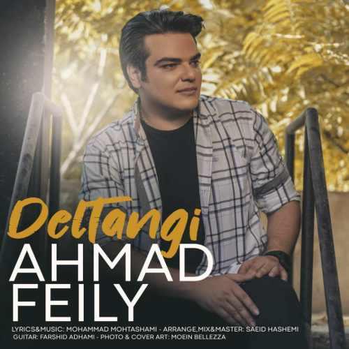 دانلود آهنگ جدید احمد فیلی به نام دلتنگی