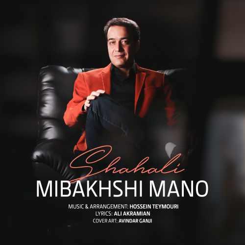 دانلود آهنگ جدید مجتبی شاه علی به نام میبخشی منو