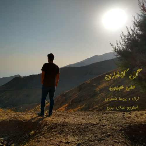 دانلود آهنگ جدید علی حبیبی به نام گل کاغذی