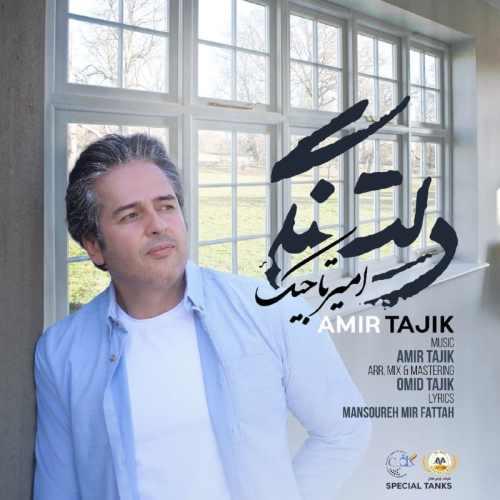 دانلود آهنگ جدید امیر تاجیک به نام دلتنگی