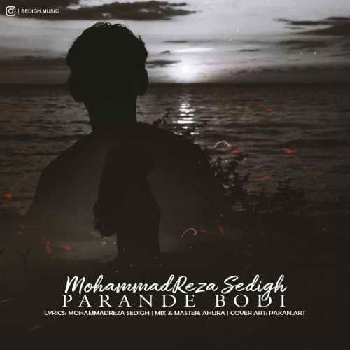 دانلود آهنگ جدید محمدرضا صدیق به نام پرنده بودی
